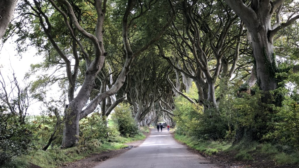 got game of thrones, dark hedges